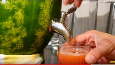 Watermelon Party Keg